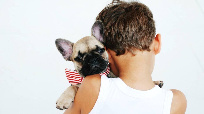 Przytulanka – najlepszy przyjaciel Malucha